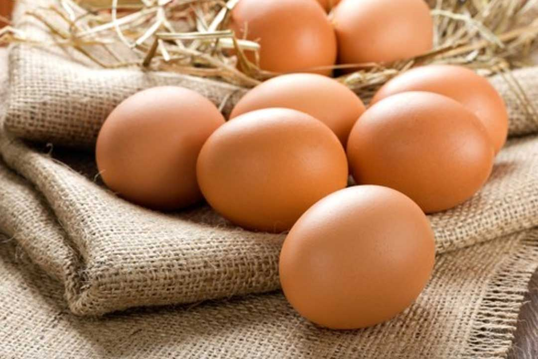 Nutritional Benefits of Eating Egg