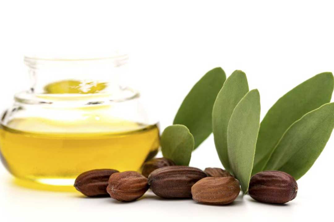 Benefits of Jojoba Oil for Healthy Skin and Hair